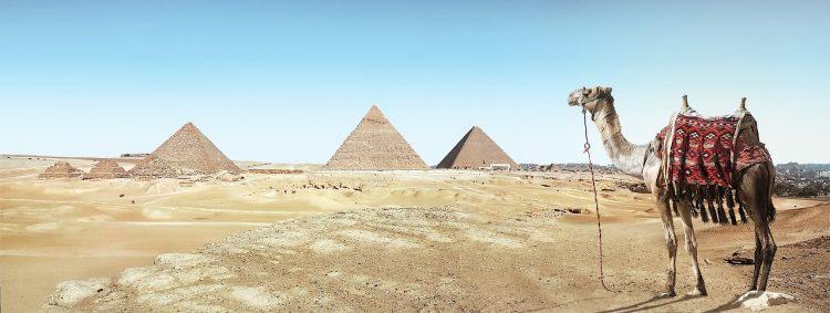 пирамиди п2п P2P платформи