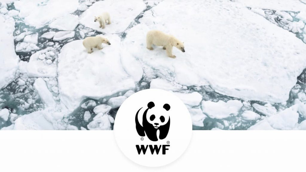 Дарения Револут WWF